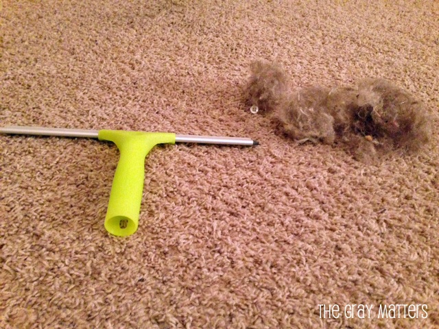 Window Squeegee to Clean Carpets