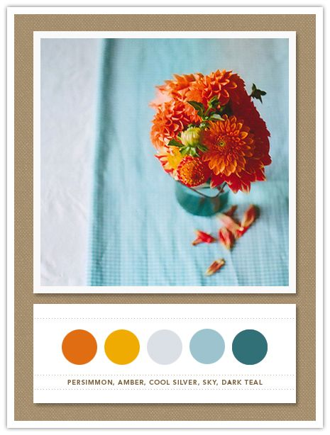 Colour Palette: persimmon, amber, cool silver, sky, dark teal