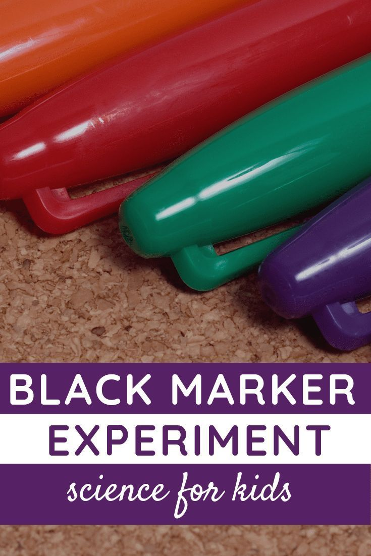 Learn About The Science Of Color With The Black Marker Experiment Preschool Science Activities Science Experiments For Preschoolers Experiments