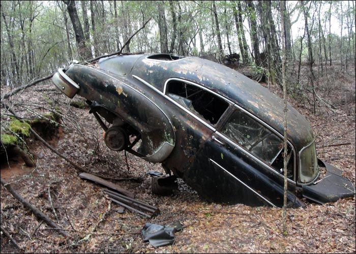 """""""Oooopsy!"""" #Vintage #Beauty #Nature #RustinPeace"""