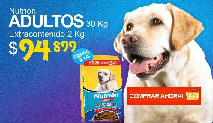 Nutrion Adultos . Nutrion Adultos en su presentación de 30kg Extracontenido + 2 Kg, es un alimento Premium de exquisito sabor natural para perros de todas las razas con el nivel óptimo de proteínas de la más alta calidad, ácidos grasos omega    que logra el mejor pelaje en todo tipo de perros.