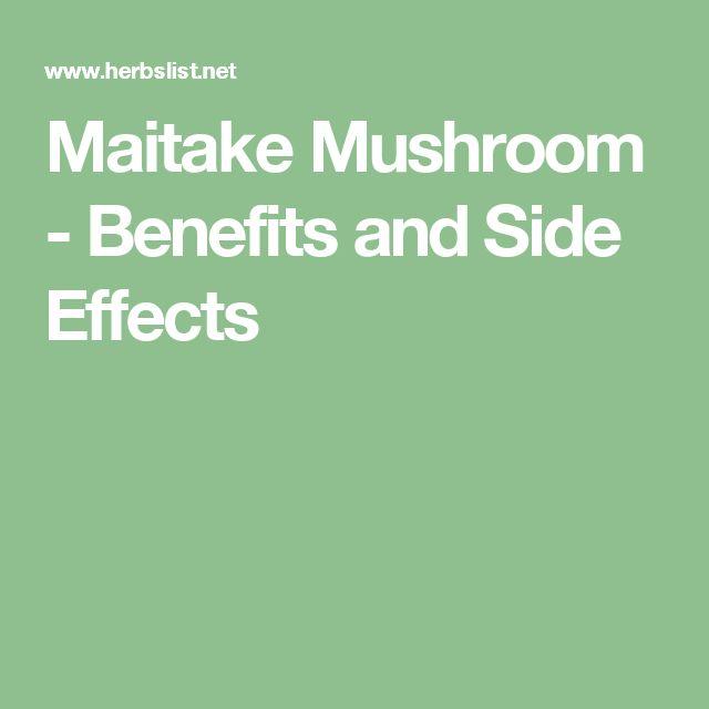 Maitake Mushroom - Benefits and Side Effects