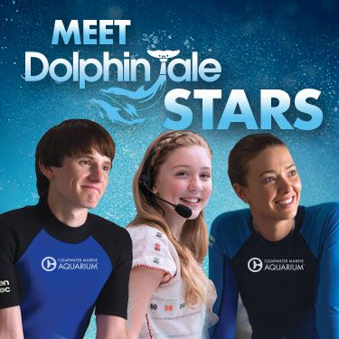 Meet the actors who played Sawyer (Nathan Gamble), Hazel (Cozi Zuehlsdorff) and Phoebe (Austin Highsmith) in the Dolphin Tale movies, the major motion pictures that were filmed right here at Clearwater Marine Aquarium and throughout the beautiful St. Pete/Clearwater area of Florida!