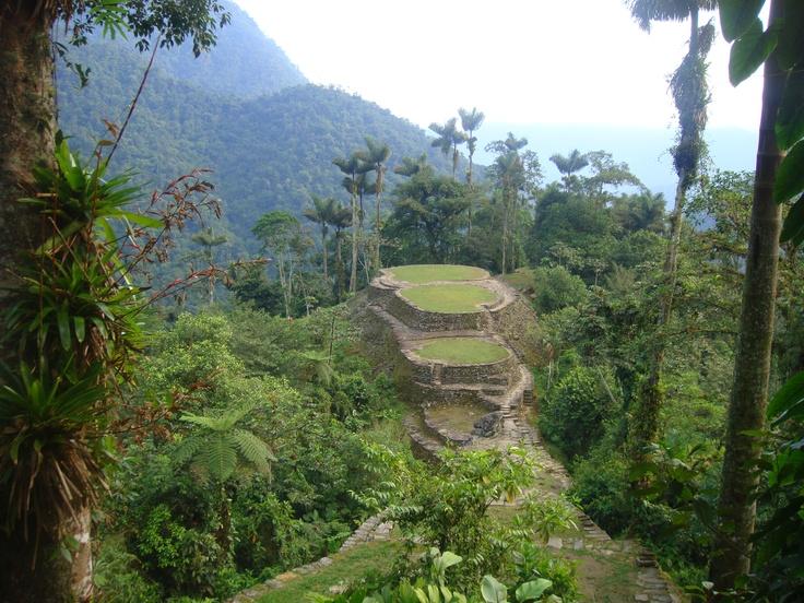 Constructions en terrasse de la Cité Perdue fondées par les Tayronas en l'an 800 #Colombia #ciudadperdida