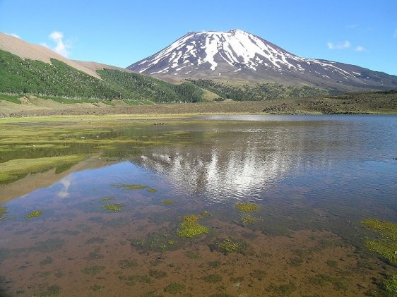 Lonquimay Volcano, Chile