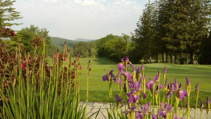 Beautiful perennial gardens, golf course landscapes, irises