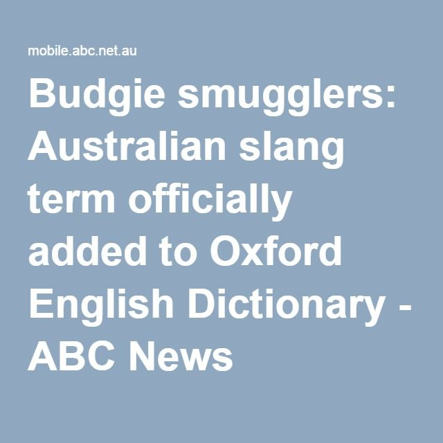 slang words added to the dictionary