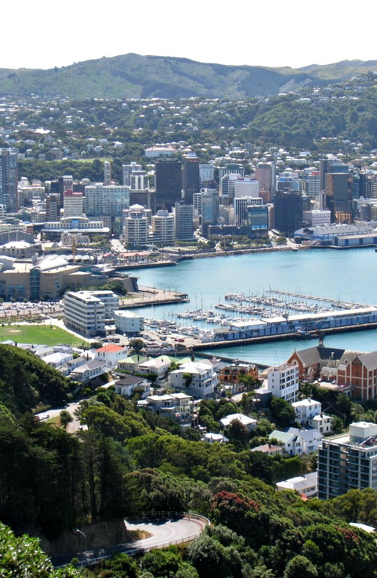 Wellington city and harbour. New Zealand