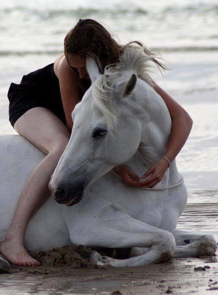 This a picture of perfect happiness. Hugs, sand, and horse... It's…