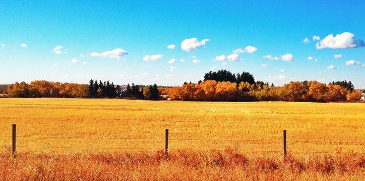 Alberta skies. Wainwright Alberta