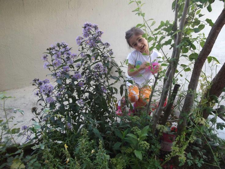 Torunum iklim ve çok sevdiği yıldız çiçekleri.