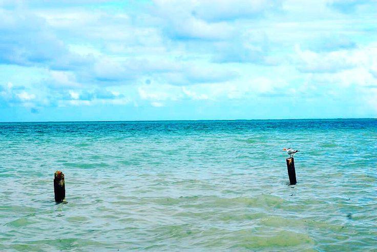 Siankaan Mexico Tulum rivieramaya travel bluewater