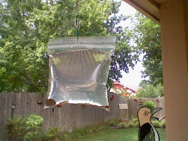 How to keep pesky flies away from your BBQ. FLIES will never come in your house again! Pennies hung in a baggie of water near the door. Yeah! We do this in Florida!. ☀CQ #backyard #camping #outdoor http://www.pinterest.com/CoronaQueen/outdoor-living-alternatives/