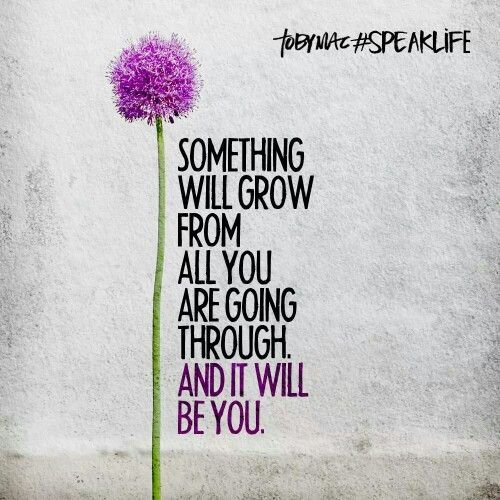 Something will grow from all you are going through and it will be you. #gratitude