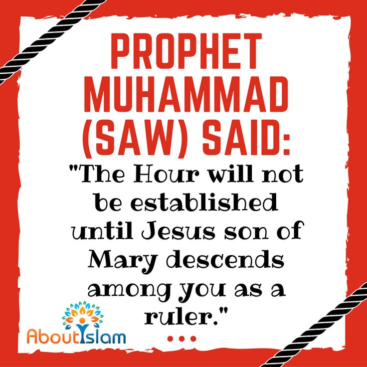 Although we don't know when Jesus (PBUH) will return, we are certain he will. 5 Muslim beliefs about Jesus' return⇒