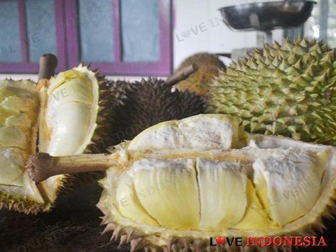 Tips Memilih Durian yang Matang dan Manis, Tanpa Tertipu Penjual