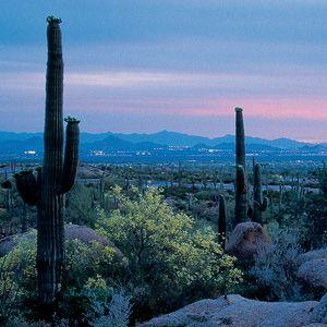 Scottsdale, Arizona where we'll call home soon!