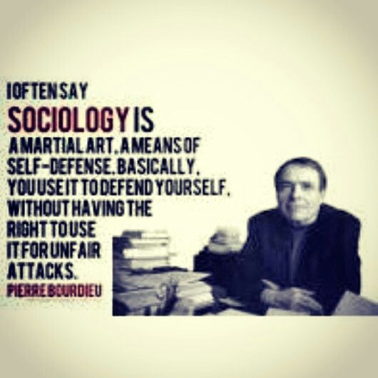 Which is best for my interests: Anthropology or Sociology?