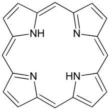 Relations entre la phtalocyanine et le macrocycle porphyrinique - Les porphyrines sont des molécules à structures cycliques impliquées dans le transport de l'oxygène et pouvant jouer le rôle de cofacteur lié (groupement prosthétique) de certaines enzymes. Elles entrent dans la composition de l'hémoglobine, dans le globule rouge (où l'on parle alors de Porphyrine érythrocytaire) et tiennent donc une place importante dans le métabolisme respiratoire.