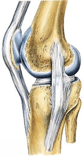 Como proteger os joelhos