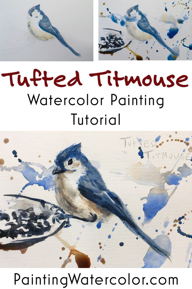 Backyard Bird Sketch Tufted Titmouse Watercolor Painting Tutorial
