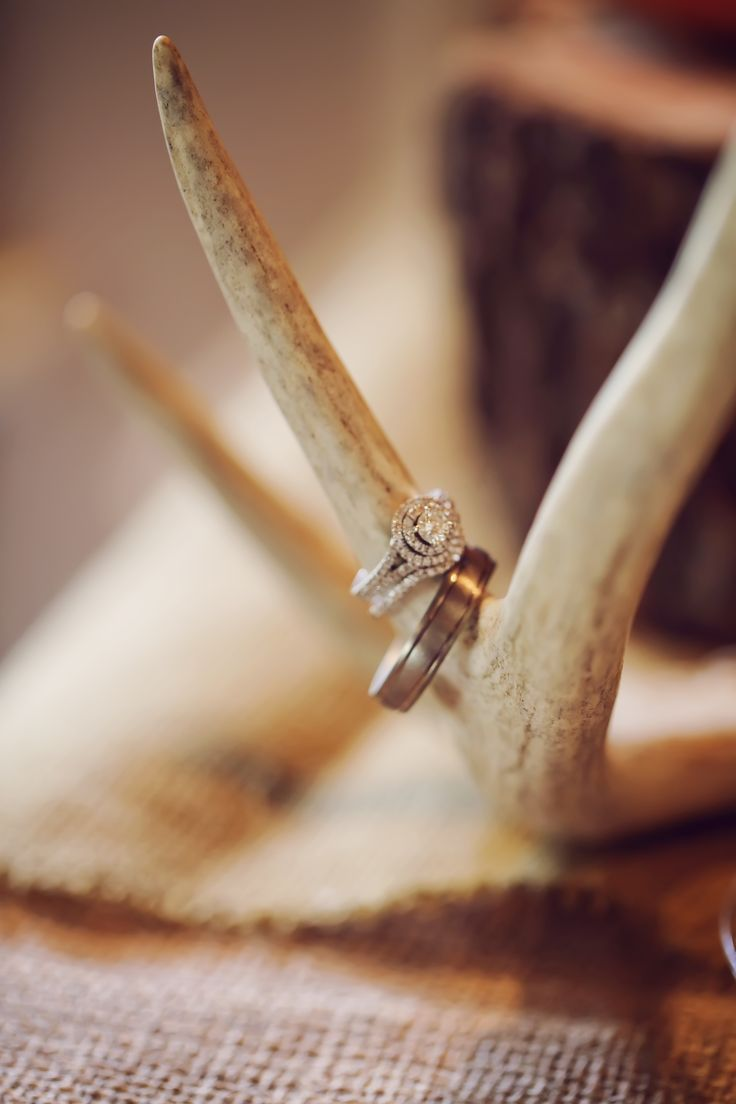 Groom's table was decorated in a rustic outdoor theme. This is their wedding rings. Photo by @Amanda Puckett