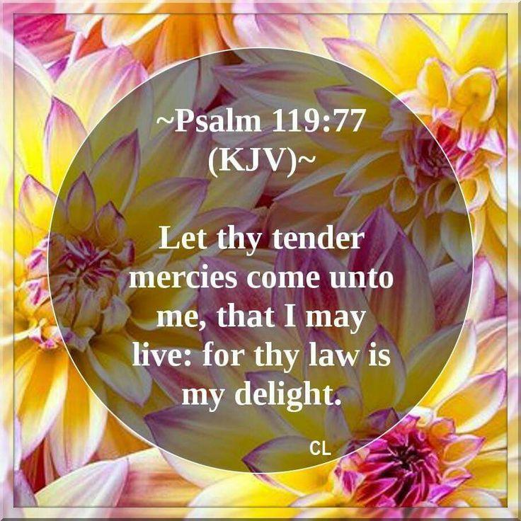 Psalm 119:77 KJV