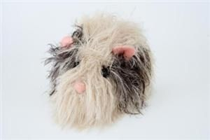Knitting Pattern For A Guinea Pig : Knitted guinea pig pattern crafts for my mom Pinterest