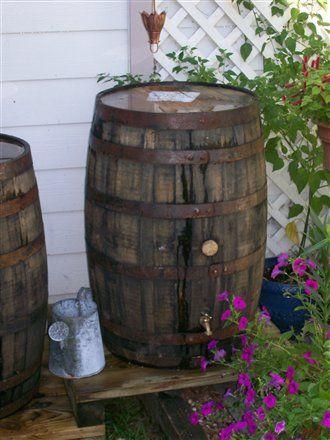 whiskey (rain) barrel