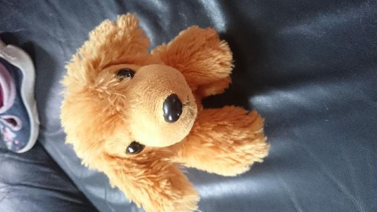Lost on 22 Jul. 2016 @ Graves Park Sheffield . Lost Lucy doggy last seen at Graves Park Sheffield 22-7-16 my 2year old is very upset please help Lucy find her way home Visit: https://whiteboomerang.com/lostteddy/msg/3m4mez (Posted by Sophie on 22 Jul. 2016)