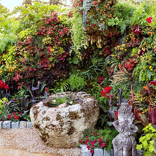 Build a living wall - Ideas for a Tropical Garden - Sunset