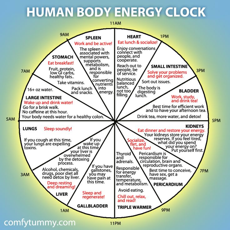 Infographic: Explore Your Human Body Energy Clock