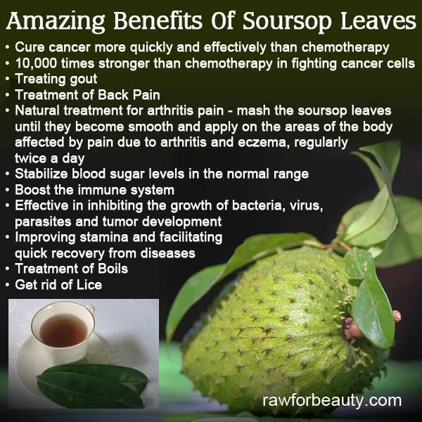 Amazing Soursop. Not so well known in Australia, but this is slowly changing.