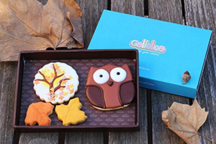 Pack pequeño de 10x15 cm galletas de vainilla y mantequilla, decoradas con glasa artesana. El pack contiene tres galletas de otoño un buho de 7 cm aprox, un árbol que caen sus hojas y dos hojas pequeñas de 5 cm aprox. Diseño de Galletea. Árbol diseño original de @fiestasmolonas http://www.galletea.com/galletas-decoradas/otono/init/d/285/