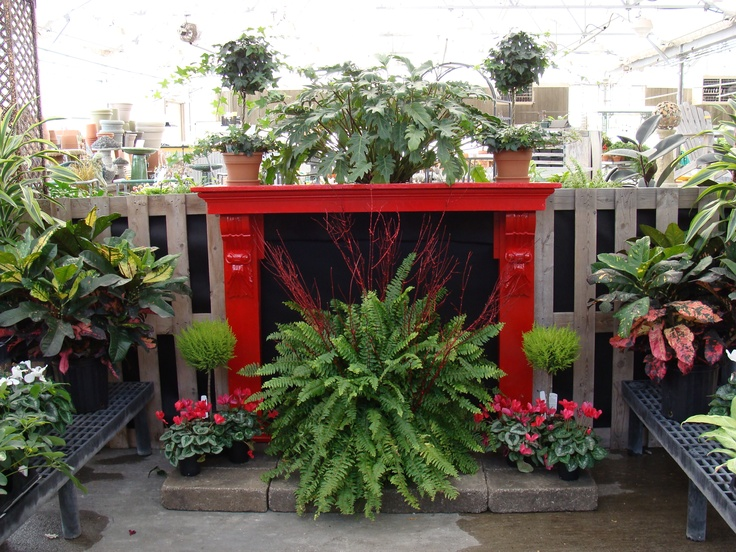 One Of The Houseplant Displays By Don Amp Rick In The Greenhouse At Hillermann Nursery Amp Florist