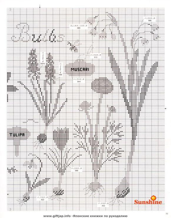 Spring Bulbs (Pg 3 of 3)