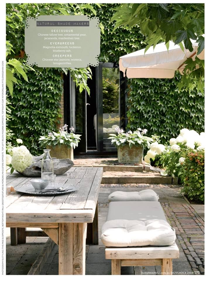 Great outdoor setting with table & chairs, umbrellas, green walls of Boston Ivy and stone planters with hostas and hydrangeas
