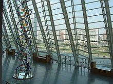 El Museu de les Ciencies Principle Felipe at the City of Arts and Sciences [Cuidad de las Artes y las Ciencias], Valencia, Spain 1998,  Architects:  Santiago Calatrava and Félix; Candel; this building is an interactive science museum