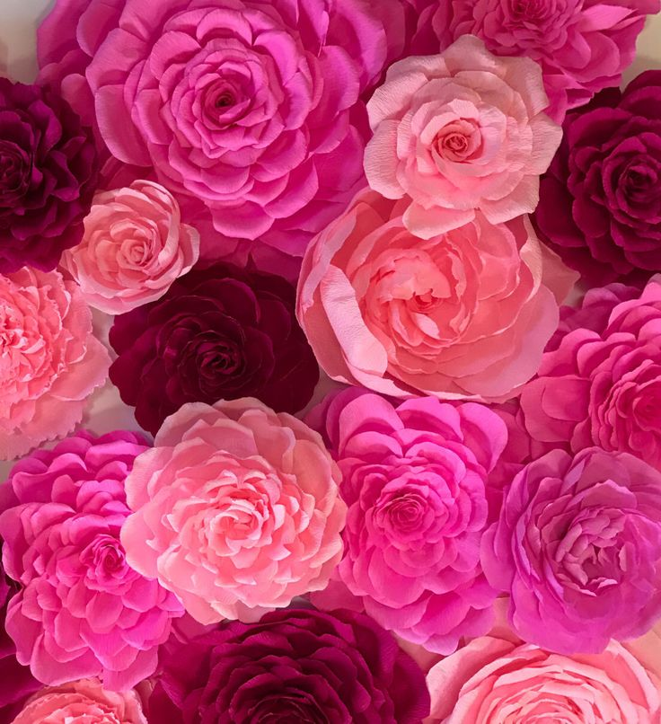 21 best Large Wall Paper Flowers images on Pinterest   Crepe paper ...