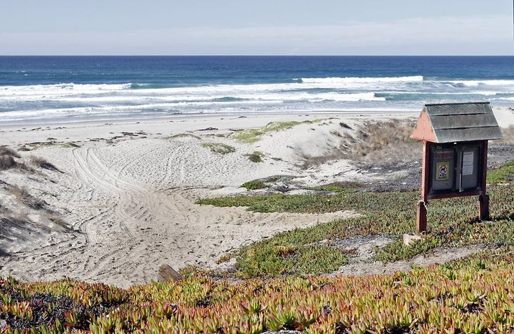 Enjoy a stroll on Surf Beach in #Lompoc, California.