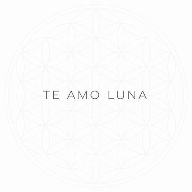 Última super Luna del 2016  #MantrasDeLuz