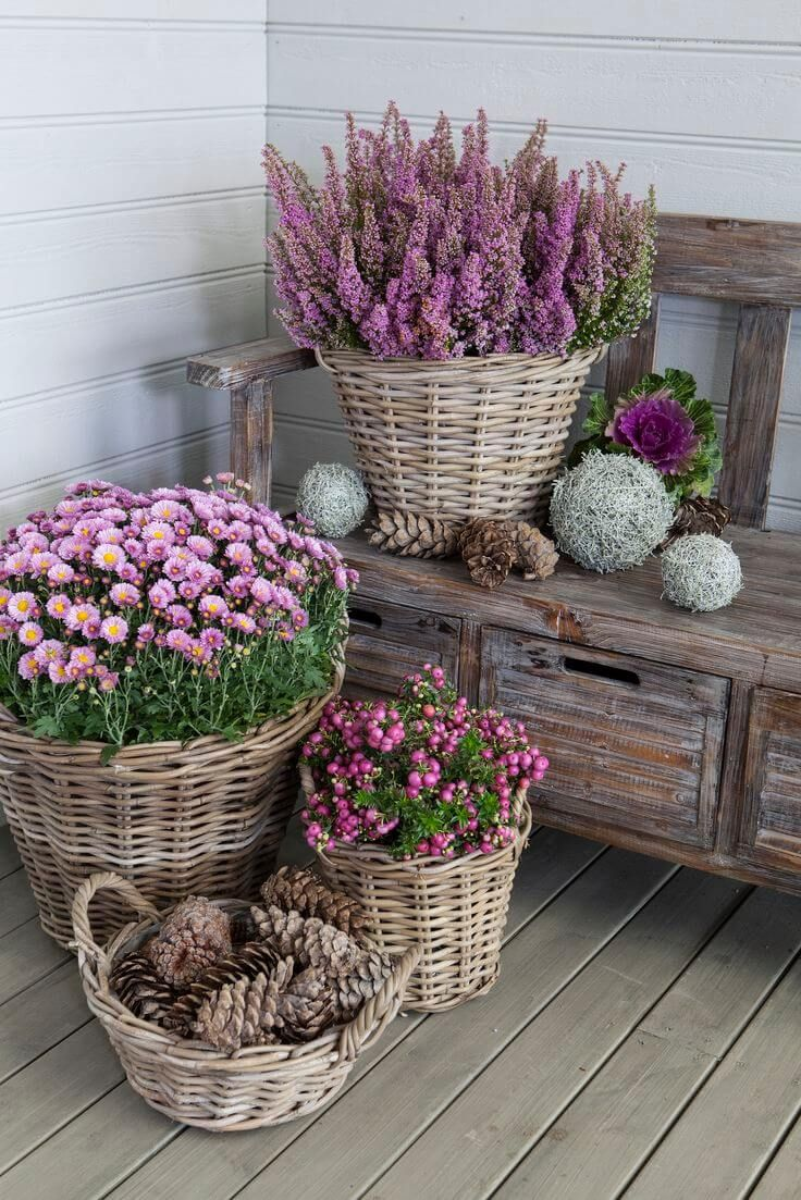 Pretty Wicker Basket Flower Pots