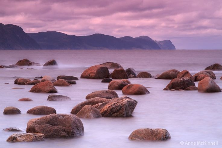 Lobster Cove, Gros Morne National Park, Newfoundland, Canada