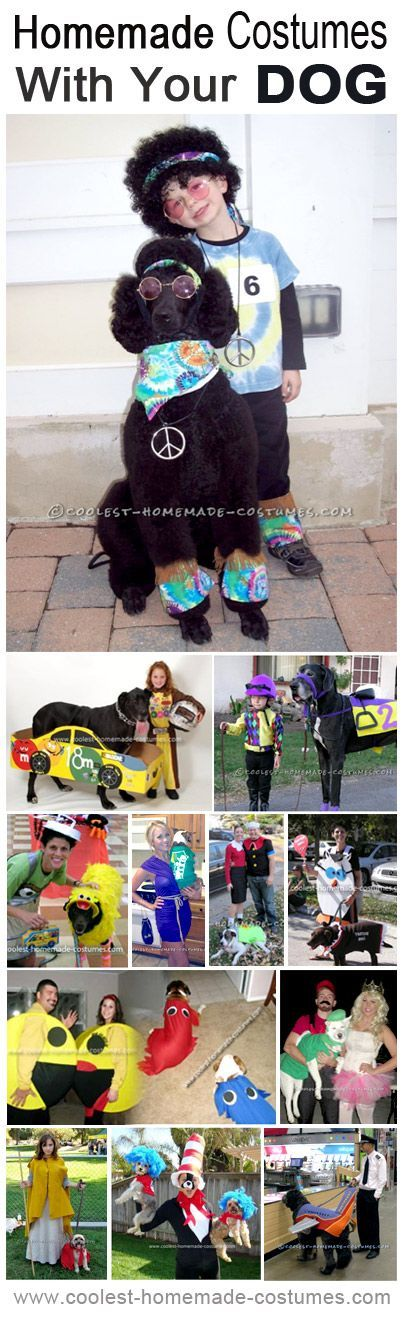 Dress up with your dog for Halloween! Here are the coolest pet homemade costumes!
