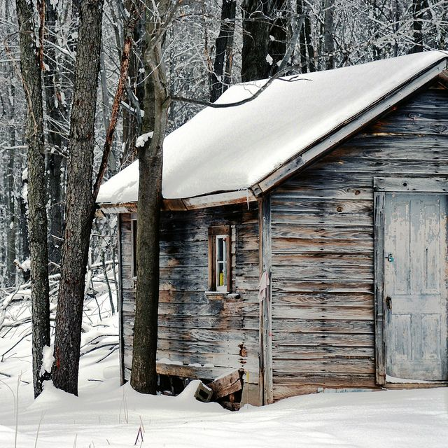 wood shed, colour | Flickr - Photo Sharing!