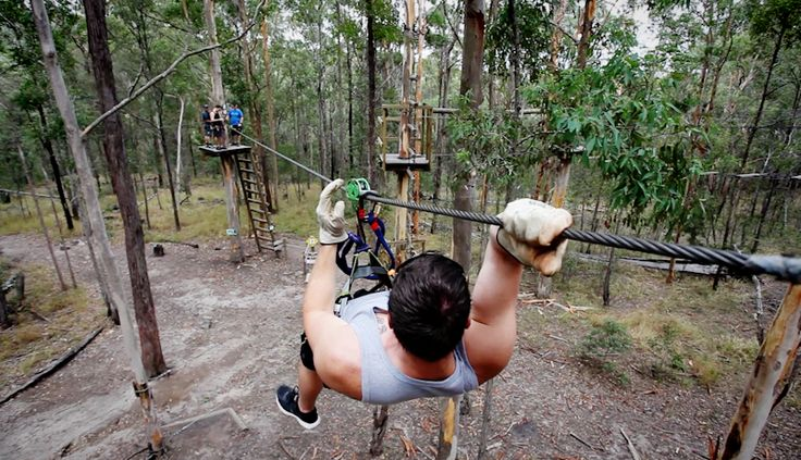 Go Flying through the trees at Tamborine Mountain http://ticketsandtours.com.au/travel/tree-top-challenge/