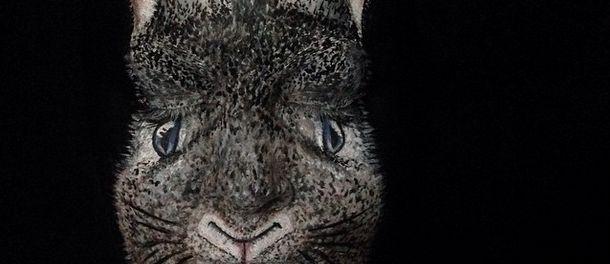 VIDEO: No es un conejo… es una persona