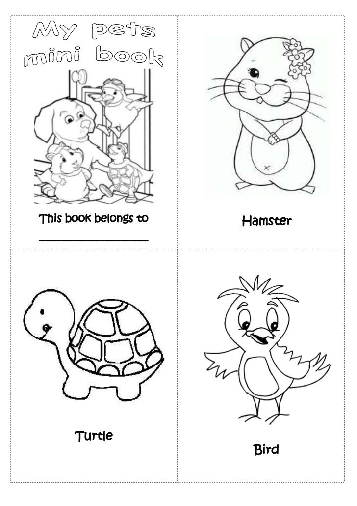 Pets mini book preschool