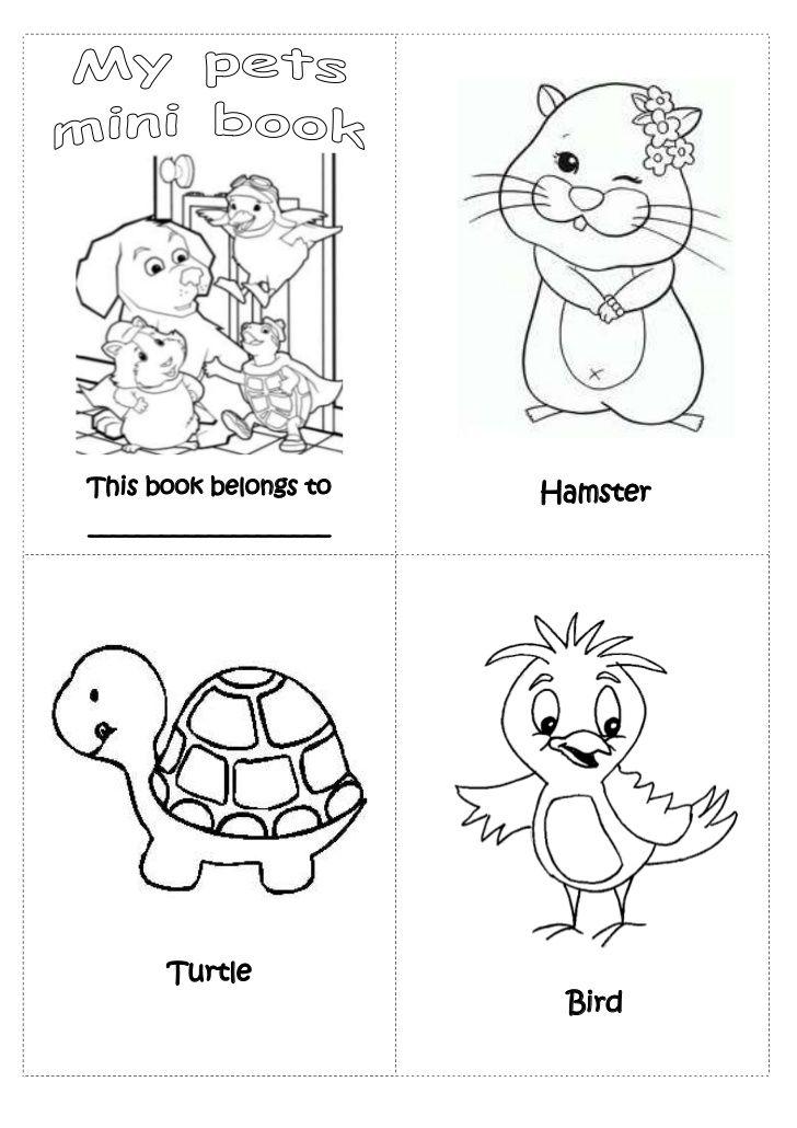 pets mini book preschool pets pinterest pets preschool and book. Black Bedroom Furniture Sets. Home Design Ideas