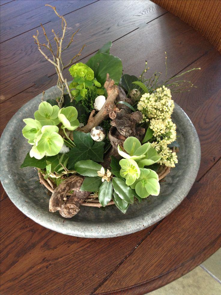 115 beste afbeeldingen over bloemschikken voorjaar op for Gerbera in de tuin